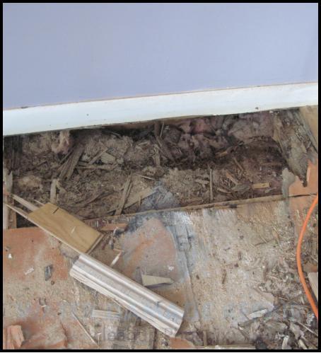 59 water damage repair cleanup phoenix restoration company 1