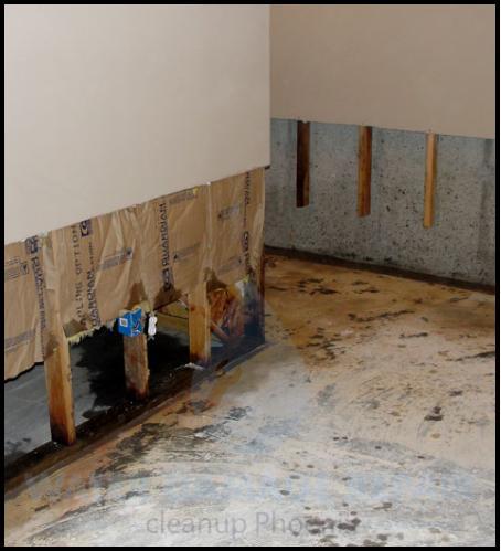 59 water damage repair cleanup phoenix restoration company 5
