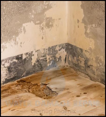 60 water damage repair cleanup phoenix restoration company 5