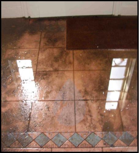 60 water damage repair cleanup phoenix restoration company 7