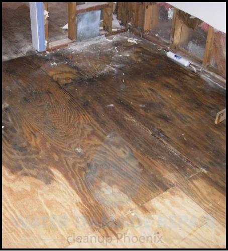 62 water damage repair cleanup phoenix restoration company 5