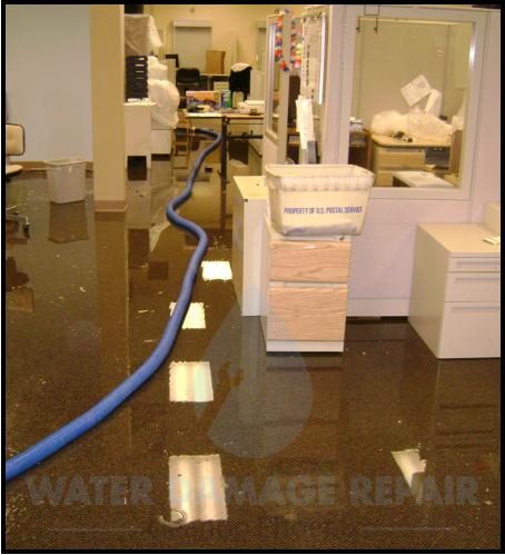 64 water damage repair cleanup phoenix restoration company 1