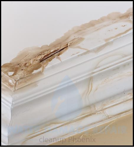 65 water damage repair cleanup phoenix restoration company 4