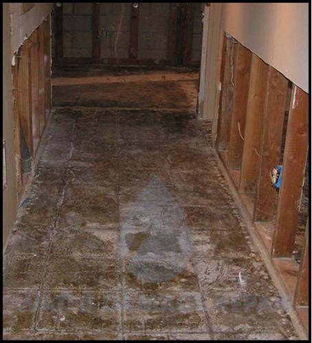 66 water damage repair cleanup phoenix restoration company 5