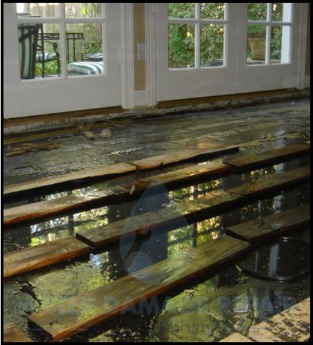 66 water damage repair cleanup phoenix restoration company 7