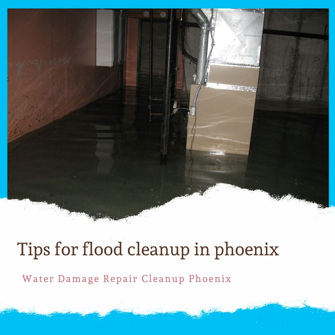 Tips for flood cleanup in phoenix