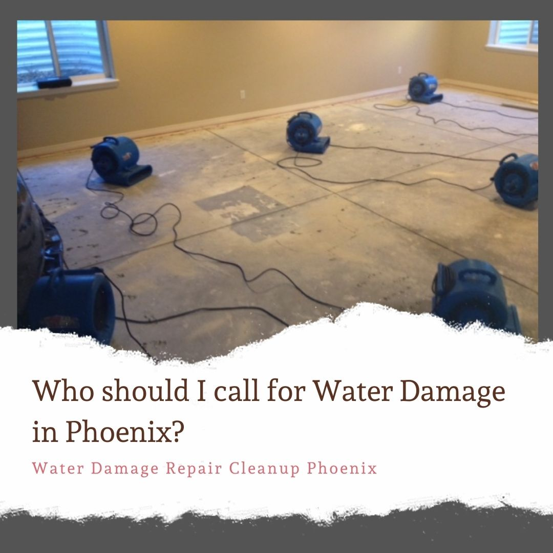 Who should I call for water damage in Phoenix