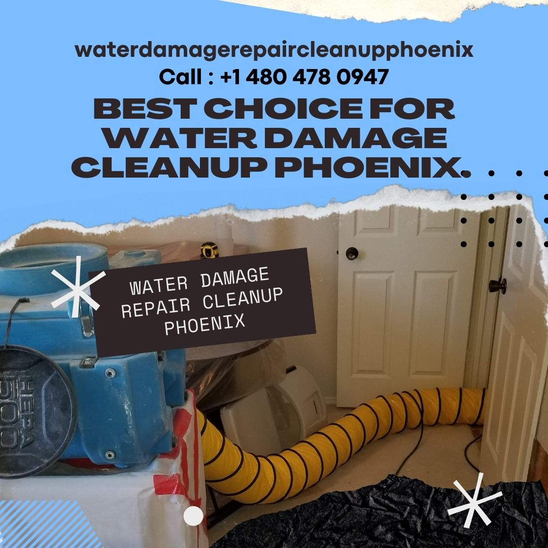 Best Choice for Water Damage Cleanup Phoenix.