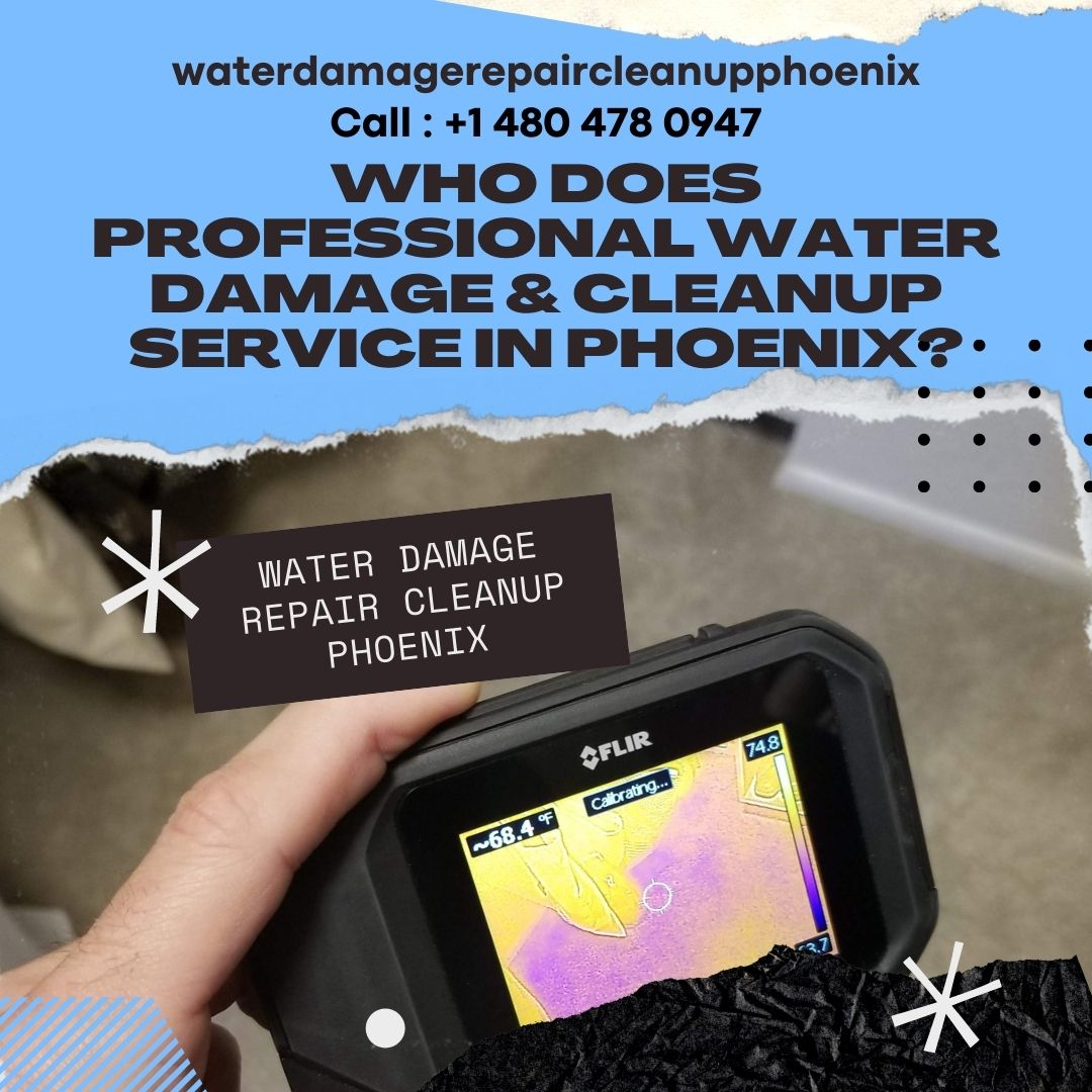 Who does Professional Water Damage & Cleanup Service in Phoenix